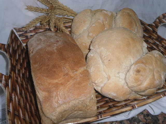 Pão de forma de centeio e trigo e Pão Alentejano para o World Bread Day 2016 - Rye sliced ​​bread and wheat and Alentejo Bread for the World Bread Day 2016